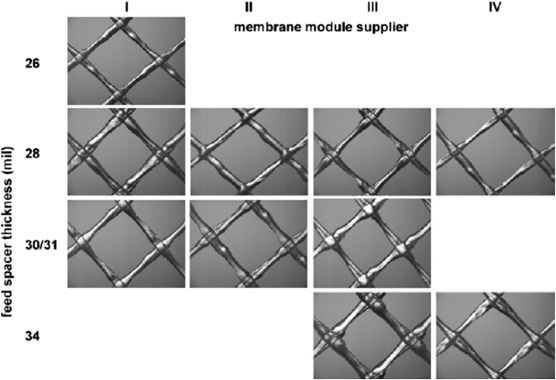 RO Membrane Became More and More Popular