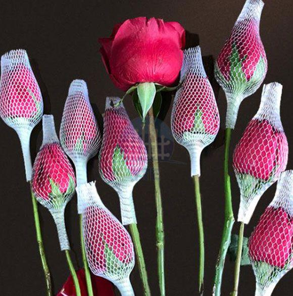 Plastic Flower Mesh Sleeve